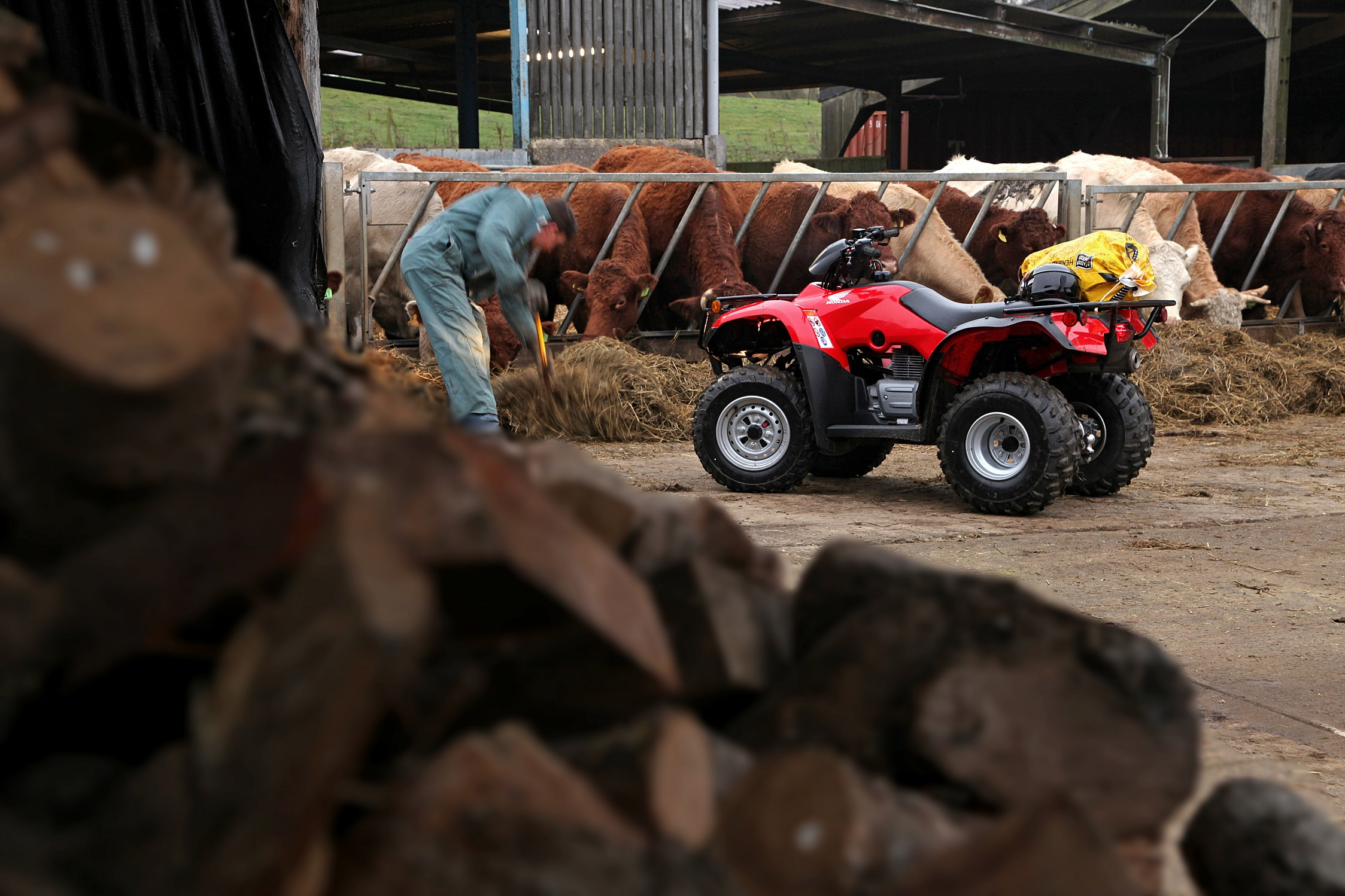 Image of Fourtrax 250 2wd range